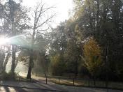 Pogoda na poniedziałek w Łodzi. Polska złota jesień już się skończyła - będzie chłodniej, chłodniej...