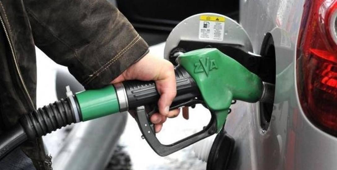 Spadające ceny na stacji paliw oraz szansa na tanie wakacyjne wojaże