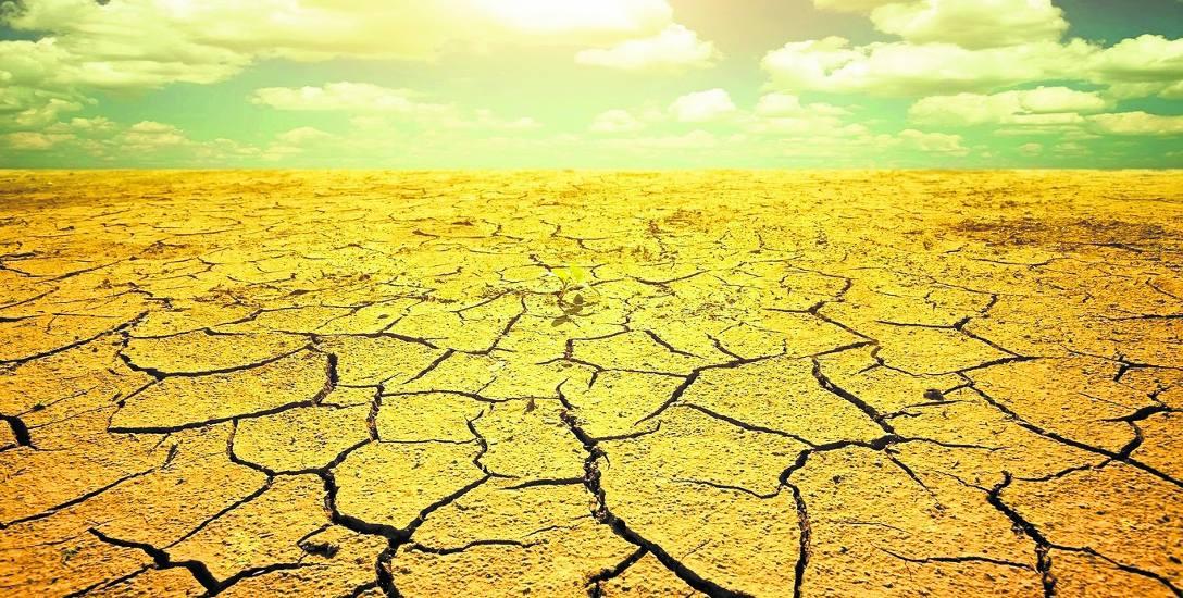Na naszych oczach bardzo szybko zmienia się klimat. Zabójczy wpływ fali upałów i nagłe spadki temperatur