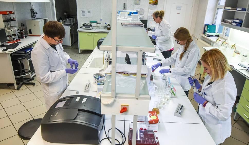 Film do artykułu: Czy koronawirus przenosi się w listach i paczkach? Raport WHO potwierdza fakty i mity o koronawirusie. Prawda o SARS-CoV-2