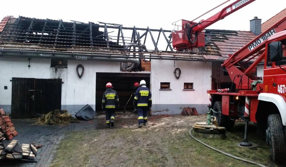 Film do artykułu: Pożar budynku gospodarczego w Suchej. Gasiło go 14 jednostek