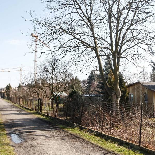 Kurczą się powierzchnie ogródków działkowych we Wrocławiu. W najbliższym czasie w związku z planowanymi lub realizowanymi budowami zostanie zlikwidowane