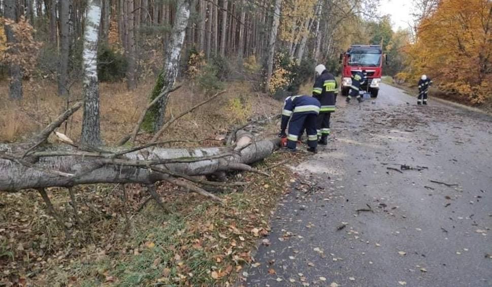 Film do artykułu: Skutki wichury w Ostrołęce i powiecie ostrołęckim (21-22.10.2021). Zdjęcia