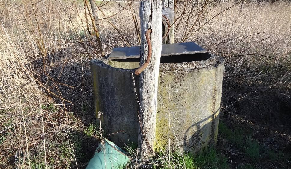 Film do artykułu: Studnia bez dna stoi w starym sadzie pod Międzyrzeczem. Przy takiej Witia z ,,Samych Swoich'' wyznawał miłość Jadźce