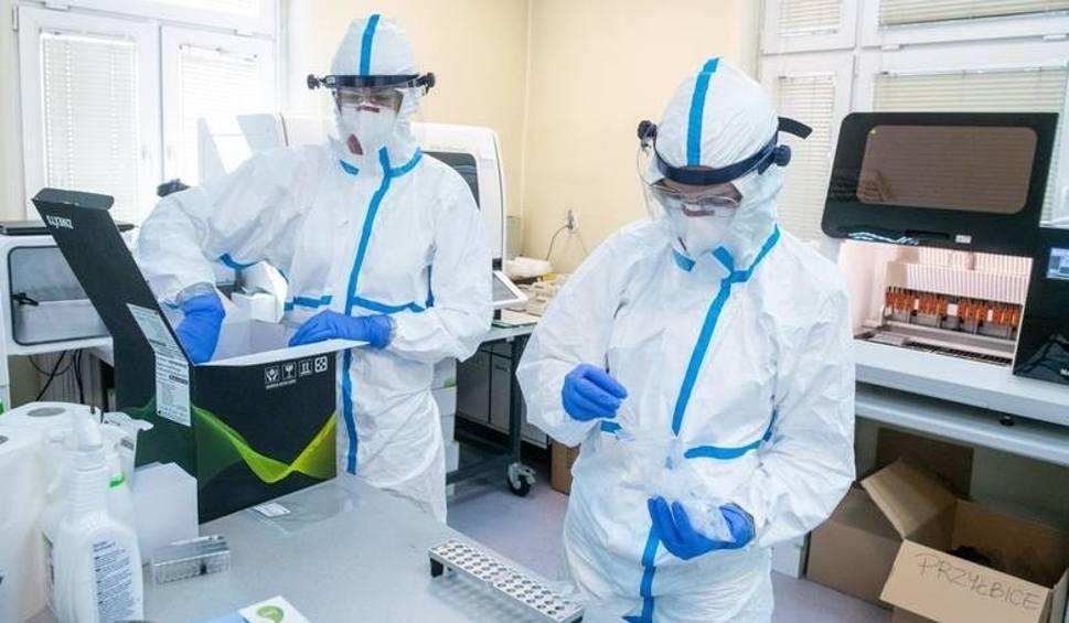 Film do artykułu: Nowy rekord zakażeń koronawirusem w Polsce! Ministerstwo Zdrowia informuje o 1002 nowych przypadkach