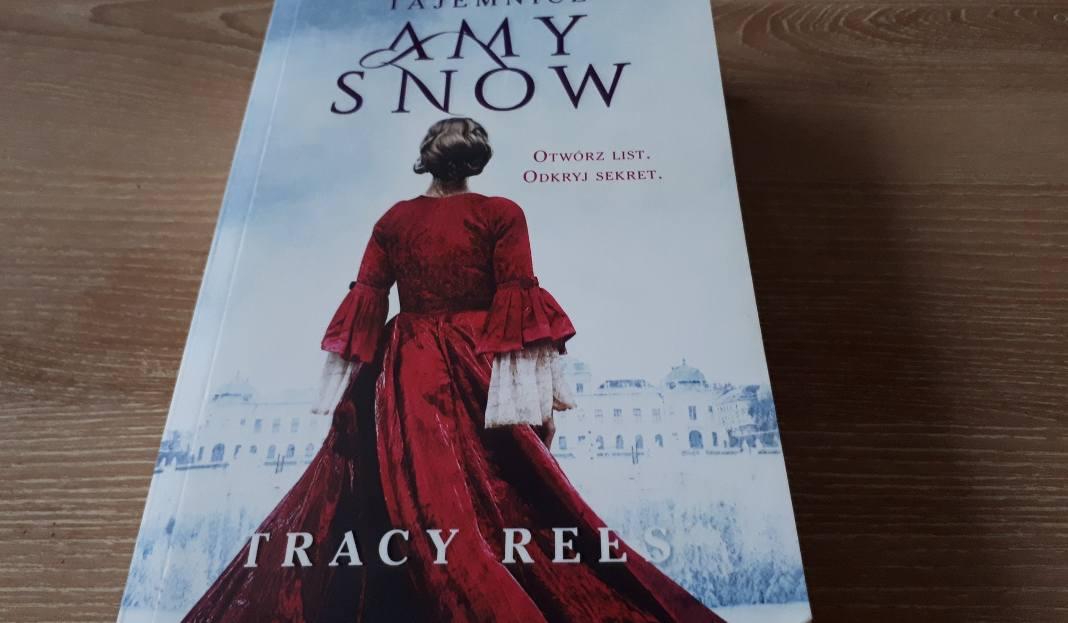 Amy Snow A Novel