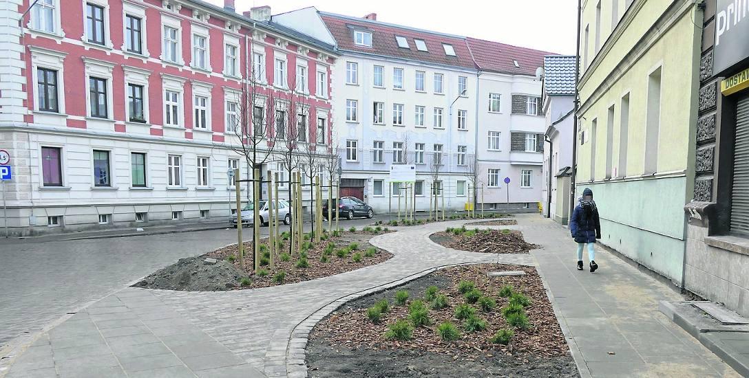 Przebudowa skwerku przy skrzyżowaniu ul. Krasińskiego i Niedziałkowskiego to część projektu budowy klinów zieleni