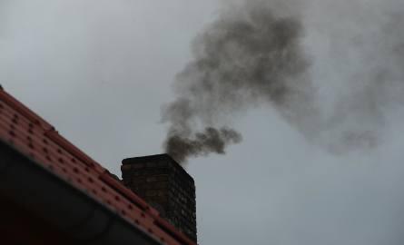 Miasto daje milion. Żeby z kominów przestał unosić się dym