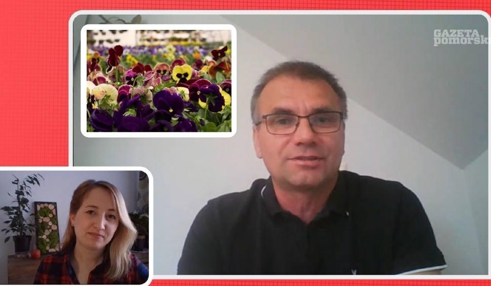 """Film do artykułu: Sadzonki kwiatów i warzyw ze straganu do sieci. W gospodarstwie ogrodniczym """"rok jest na przetrwanie"""" [wideo]"""