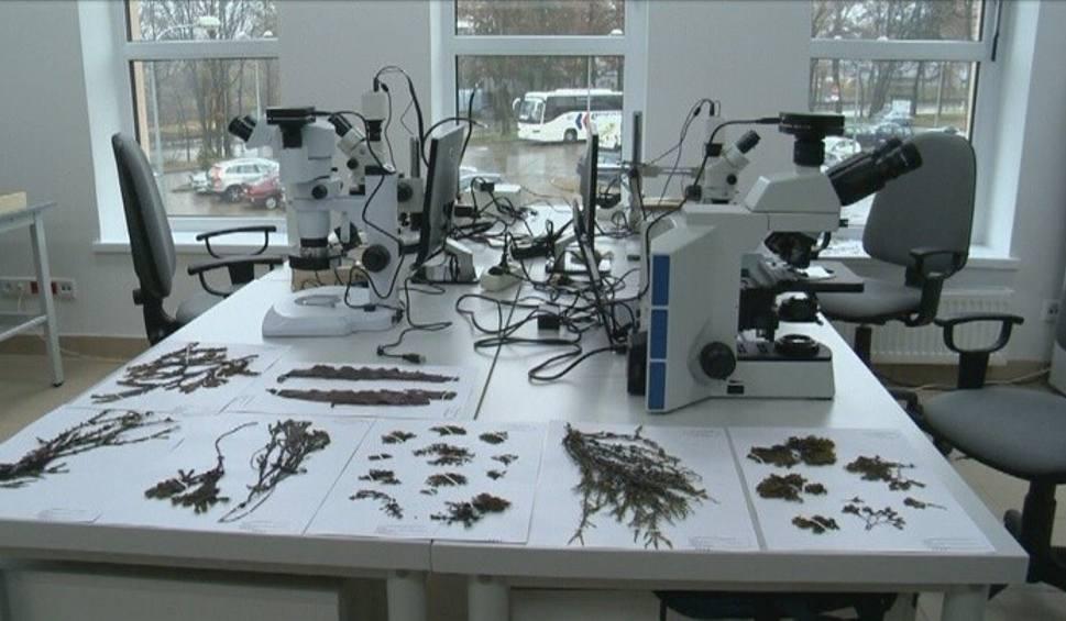 Film do artykułu: Politechnika Białostocka otworzyła Centrum Naukowo-Badawcze (wideo)