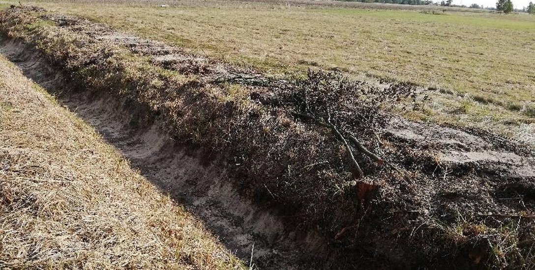 Były drzewa, jest rów. Trudno pogodzić interesy rolników i środowiska