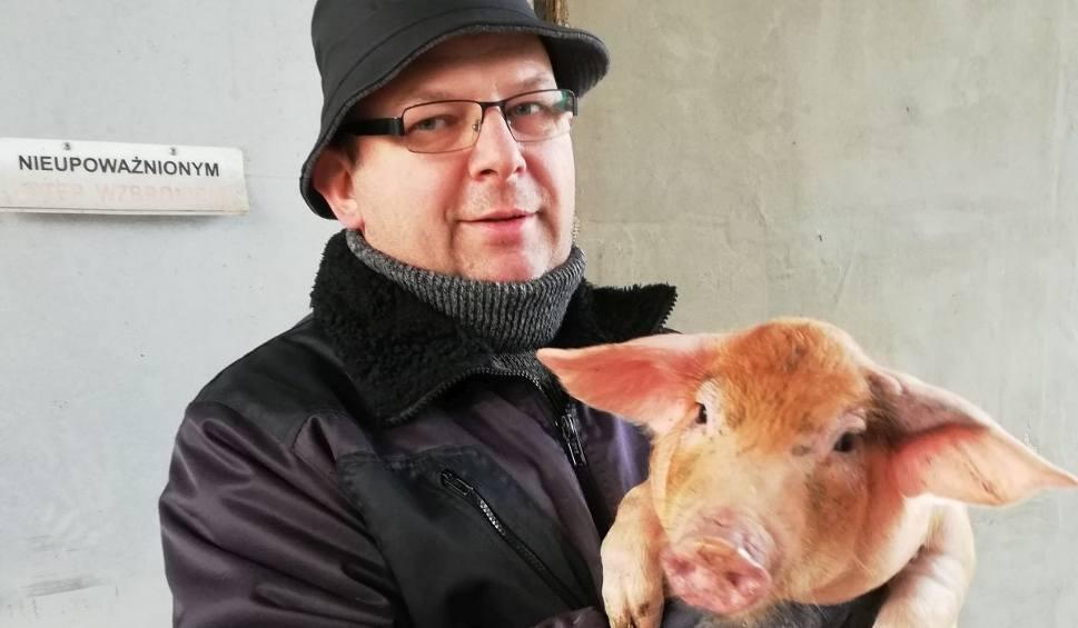 Film do artykułu: Hodowcy trzody z powiatu włoszczowskiego piszą i apelują do ministra rolnictwa o dopłaty do stada podstawowego
