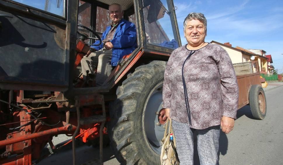Film do artykułu: Mieszkańcy gminy Osiek kochają Prawo i Sprawiedliwość. Partia uzyskała tam najwyższe poparcie w województwie (WIDEO)