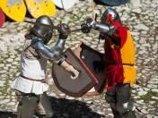 Zadaniem rycerzy było wygranie pojedynku i zdobycie róży