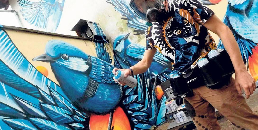 Ogromne barwne ptaki  Cukin namalował na ścianie w podwórzu przy Pracowni Lodów w centrum Koszalina - dzieło jest jego pomysłem od początku do końca,