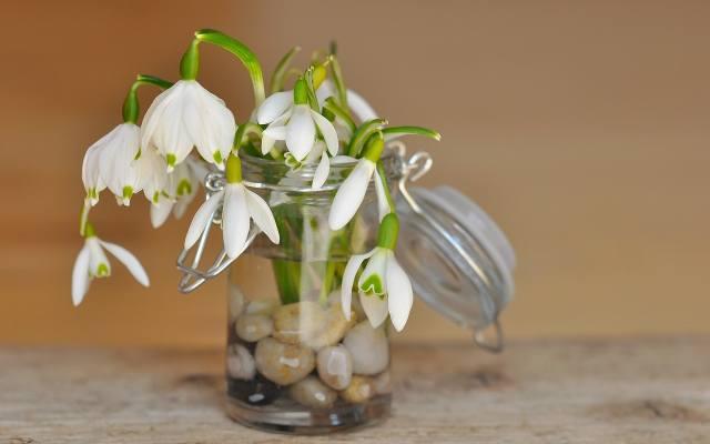 Na dno słoika wrzuć kamyki, nalej wody, włóż kwiaty i piknie wyglądający wazon gotowy.