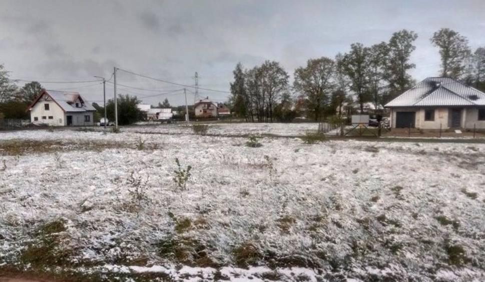 Film do artykułu: Ostrołęka. Zima w maju, 12.05.2020. Nad ranem po ulewnym deszczu spadł śnieg. Zdołaliśmy uwiecznić ten moment. Zdjęcia i wideo
