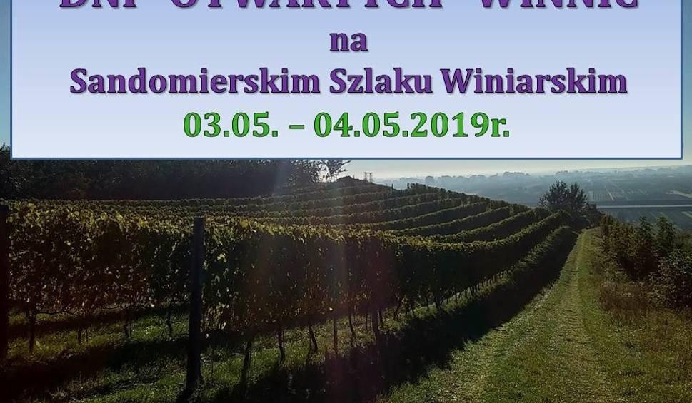 Film do artykułu: Majówka w Sandomierzu pod znakiem Dni Otwartych Winnic na Sandomierskim Szlaku Winiarskim