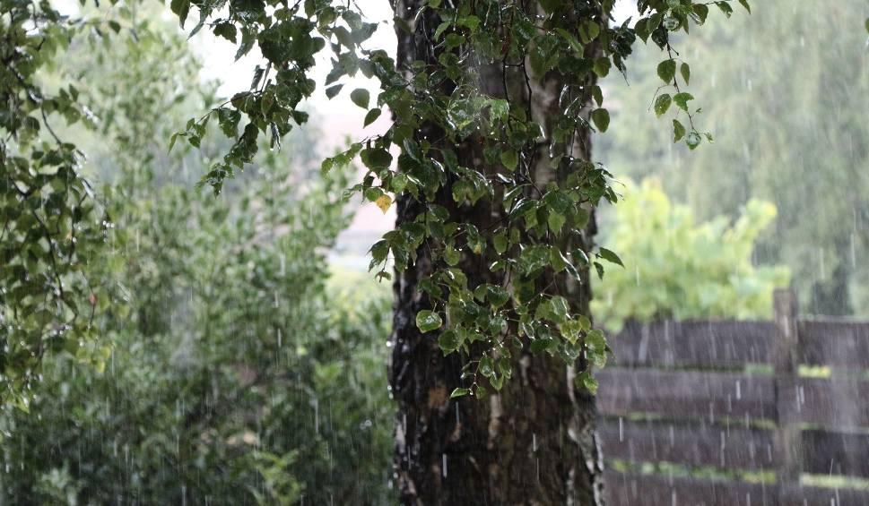Film do artykułu: Lubuskie: Prognoza pogody na piątek, 29 lipca 2016 [WIDEO]