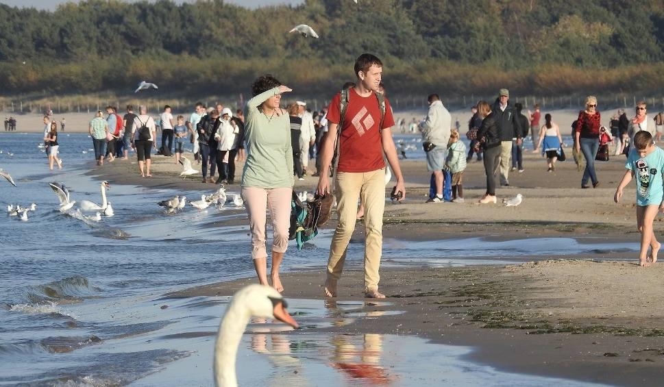 Film do artykułu: Tłumy na plaży w Śwunoujściu. Zobaczcie ZDJĘCIA