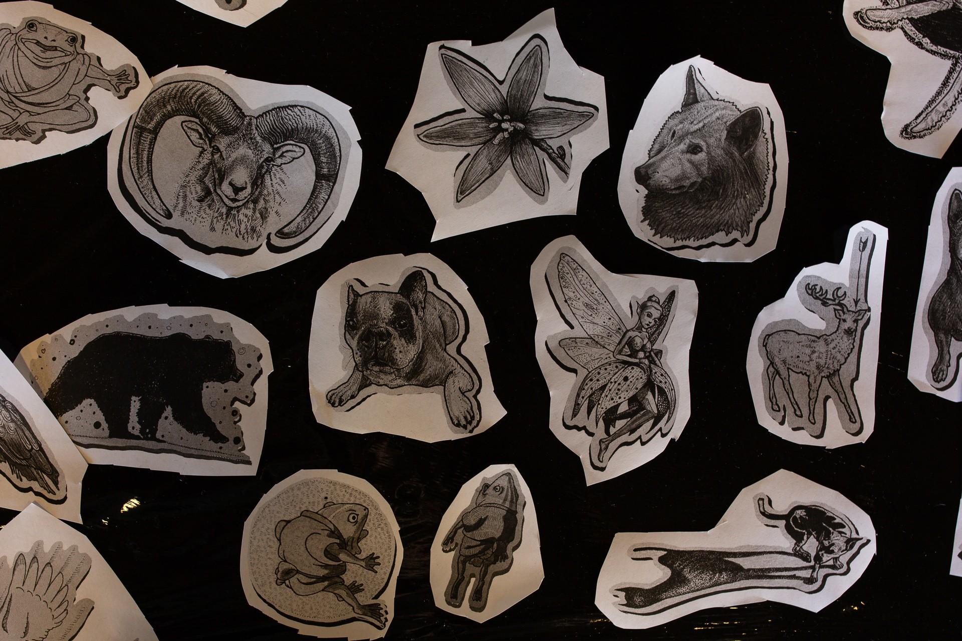 Tatuaże Zamiast Futra Zobacz Zdjęcia Z Wydarzenia Galeria