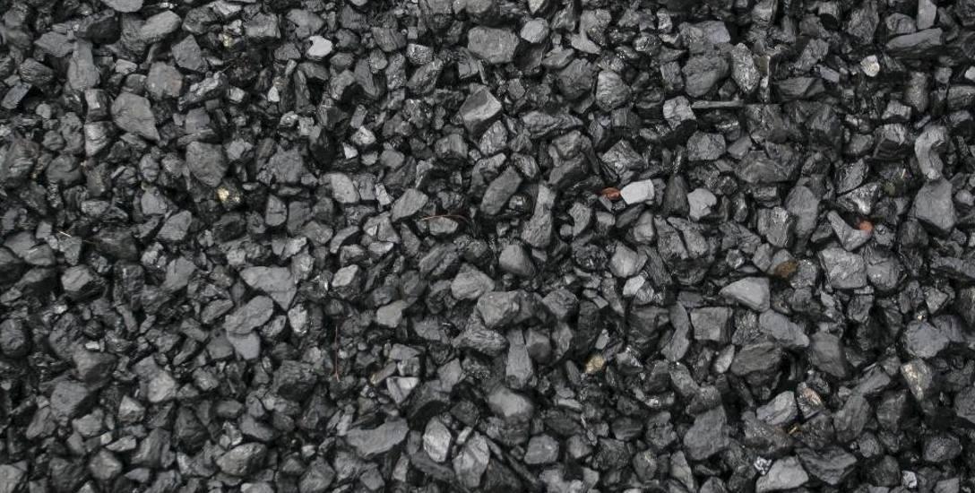 Protestują przeciw budowie fabryki węgla drzewnego w Ustrzykach Dolnych