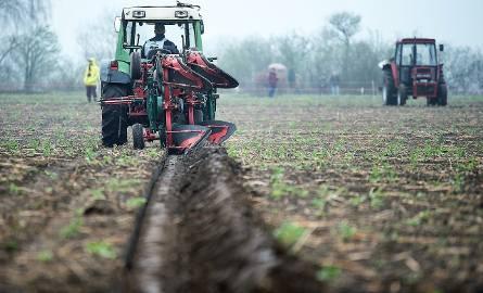 Cena ziemi rolnej w 2018 w Polsce znów urosła. Ile kosztuje hektar w województwach od października?