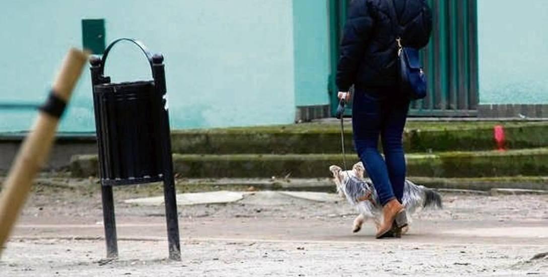 W Łodzi prawie nikt nie zbiera  odchodów po psie...