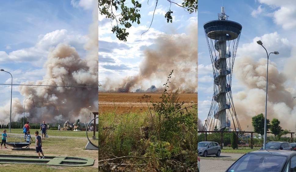 Film do artykułu: Pożar w Gniewinie (powiat wejherowski). Płonęło ponad 5 hektarów pola oraz ciągnik. Na miejscu 10 zastępów straży pożarnej! [zdjęcia]