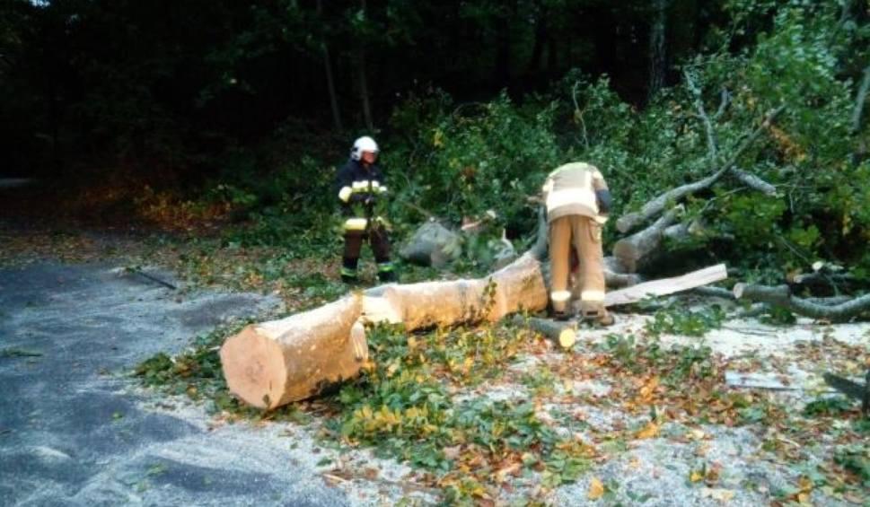 Film do artykułu: Wichura w powiecie sławieńskim. Strażacy usuwają połamane drzewa, występują awarie prądu