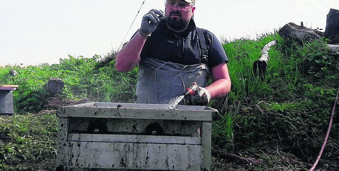 Dr Andrzej Ossowski na tzw. zmywaku, gdzie skrupulatnie przepłukuje się ziemię, aby pozyskać najmniejsze elementy, które trudno zauważyć