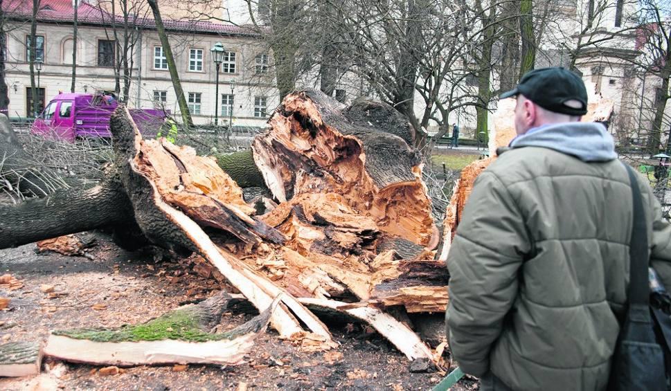 Film do artykułu: Małopolska po wichurze. Żywioł spowodował straty