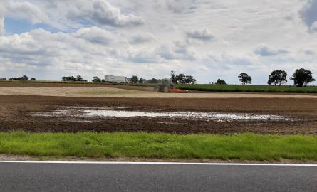 W tym roku susza w Kujawsko-Pomorskiem niszczyła uprawy, ale tylko wiosną. Potem zaczęło padać i na niektórych polach pojawiły się zastoiska wodne. Ale