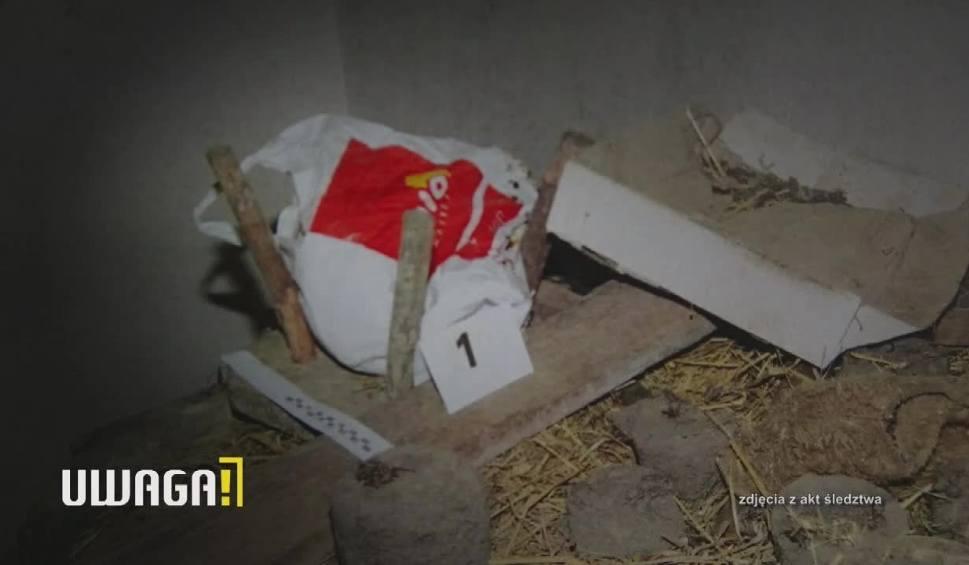 """Film do artykułu: Uwaga! TVN 15.11: Zabite dzieci ukryła w piecu, syna pochowała pod jabłonką. """"Złapał mnie za palec"""""""