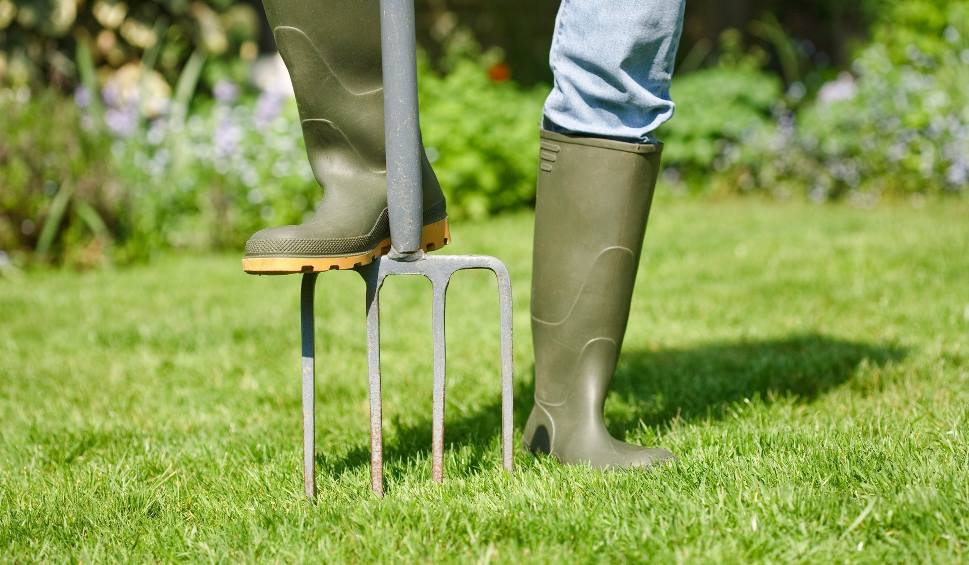 Film do artykułu: Nawożenia trawnika – ile razy, kiedy i czym nawozić trawnik