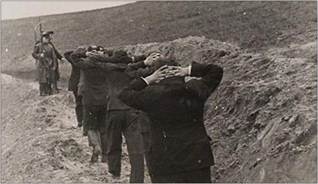 """Polscy nauczyciele prowadzeni na egzekucję przez niemieckie oddziały """"Volksdeutscher Selbstschutz"""""""
