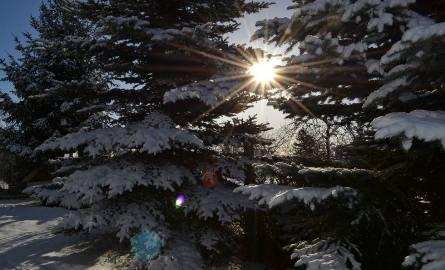 Synoptycy z Bydgoszczy i Torunia są zgodni i dają nam nadzieję na trochę śniegu w Boże Narodzenie. Czytaj więcej o pogodzie na kolejnych slajdach ---->LICZ