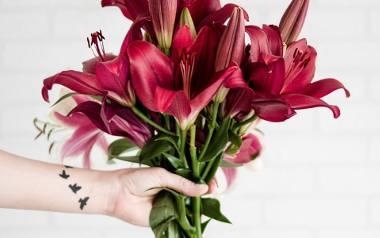 Kwiaty zdobią mieszkania, ogrody i balkony. Są także znakomitym podarunkiem dla osoby, którą darzy się uczuciem - dla mamy, babci, siostry czy ukochanej.