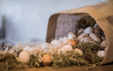 Wielkanocne dekoracje inspirowane naturą.