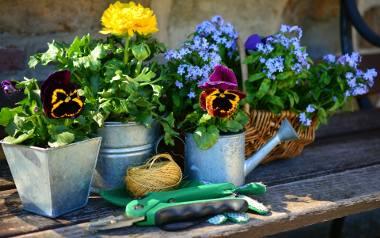 Ogrodowe Love - Urządź z nami ogród marzeń. Sprawdź!