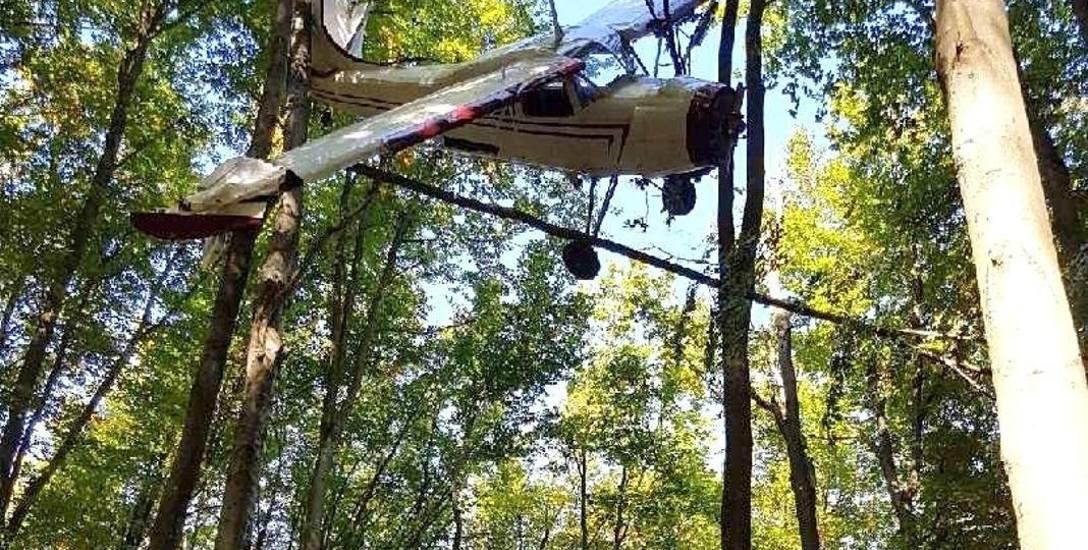 Awionetka zawisła na drzewach na wysokości ok. 18 metrów nad ziemią. W jaki sposób pilot zdołał się wydostać?
