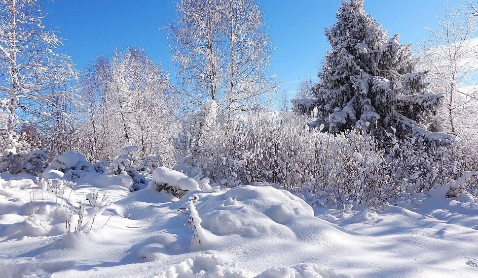 Film do artykułu: Zapowiada się zimowy poniedziałek na Podkarpaciu. Szczegółowa prognoza pogody [WIDEO]