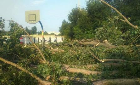 Przy Szkole Podstawowej nr 56 w Łodzi sierpniowa burza przewróciła drzewa na boisko. Nadal nie można z niego korzystać
