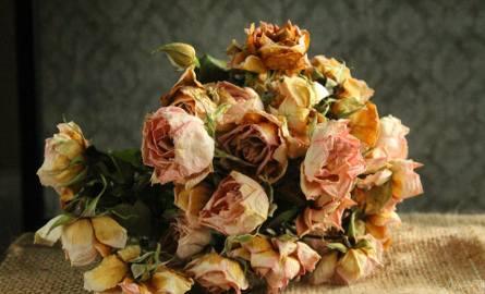 Bukiet suchych róż