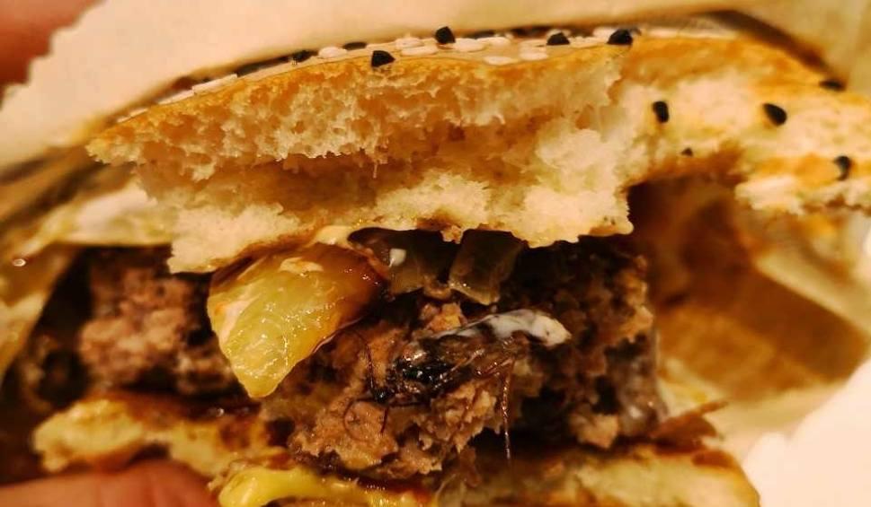 Film do artykułu: W drodze do Świnoujścia: Kanapka z McDonalda z robakiem