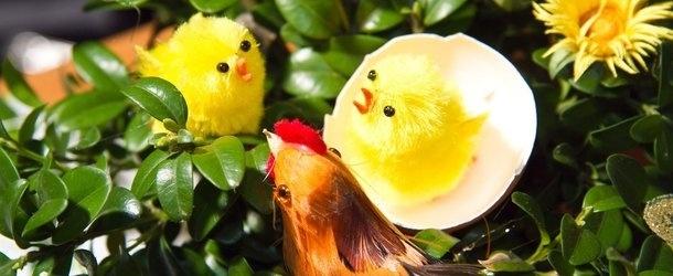 Wielkanoc Smakosza w skierniewickim MOK