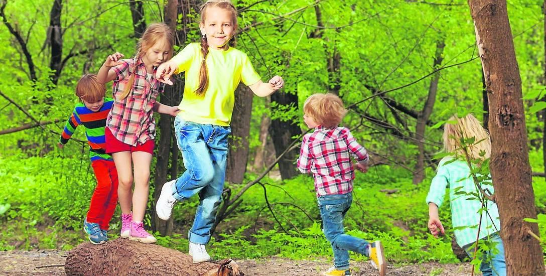 Każdy z nas powinien troszczyć się o lasy. Nie ma większej przyjemności niż spacer albo zabawa w pięknym lesie