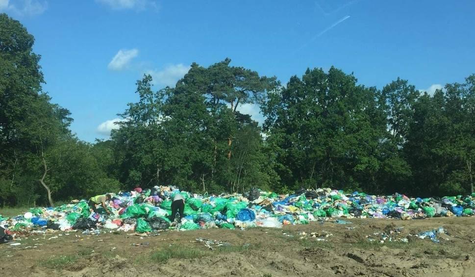 Film do artykułu: Hałda śmieci po Pol'and'Rock Festiwalu przy lesie w Kostrzynie. Dlaczego odpadki się tu znalazły?