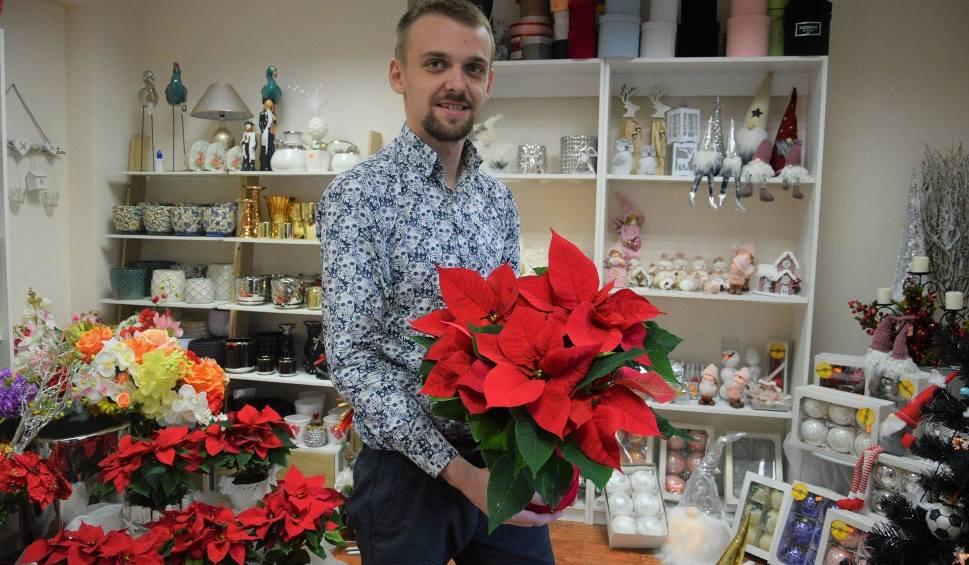 Film do artykułu: Gwiazda Betlejemska to wyjątkowy kwiat i symbol - mówi Przemysław Służalski, Florysta Roku 2019 w województwie (WIDEO)