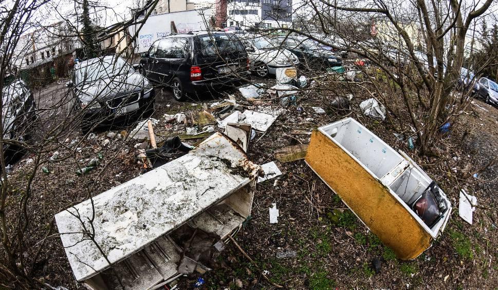 Film do artykułu: Śmieci w Bydgoszczy. Kto zrobi w mieście porządek?
